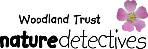 logo_naturedetectives